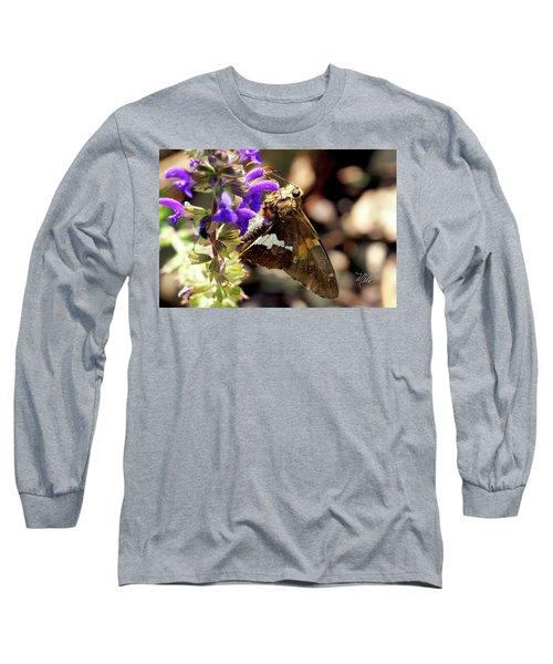 Moth On Purple Flower Long Sleeve T-Shirt by Meta Gatschenberger