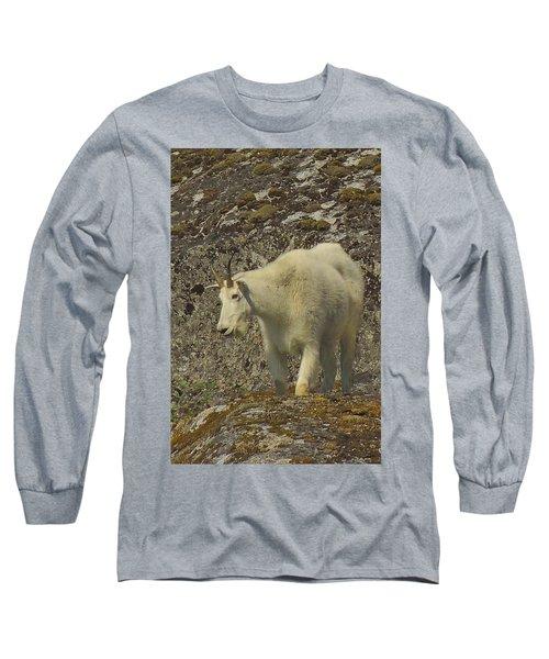 Mountain Goat Ewe Long Sleeve T-Shirt