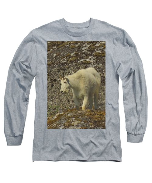 Mountain Goat Ewe Long Sleeve T-Shirt