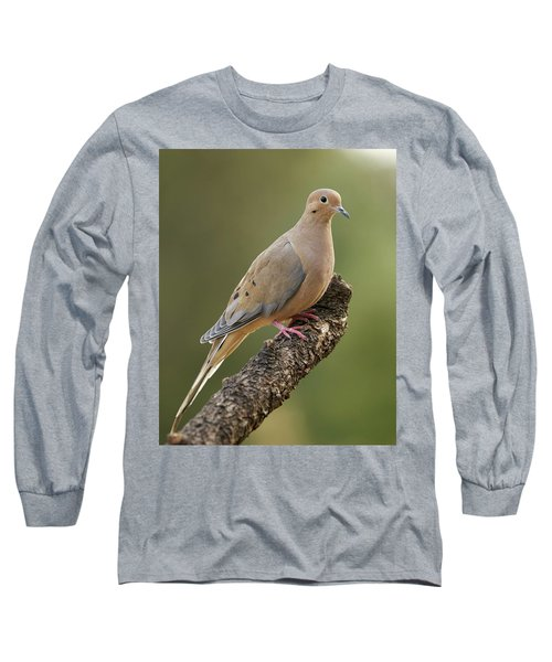 Mourning Dove Long Sleeve T-Shirt by Doug Herr