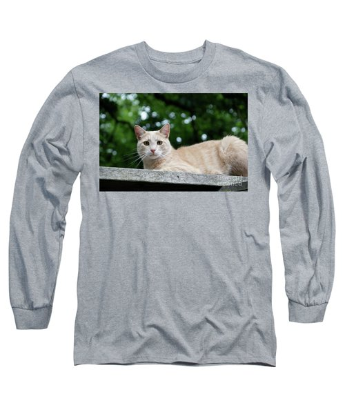 Orange Tabby Long Sleeve T-Shirt