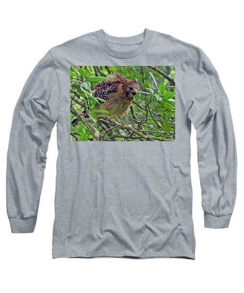 Red-shouldered Hawk Long Sleeve T-Shirt by Farol Tomson