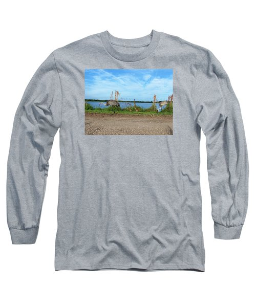 Long Sleeve T-Shirt featuring the photograph Sandhill Crane Family  by Chris Mercer