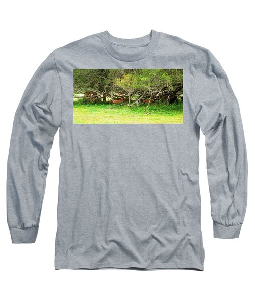 Shelter From The Sun Long Sleeve T-Shirt