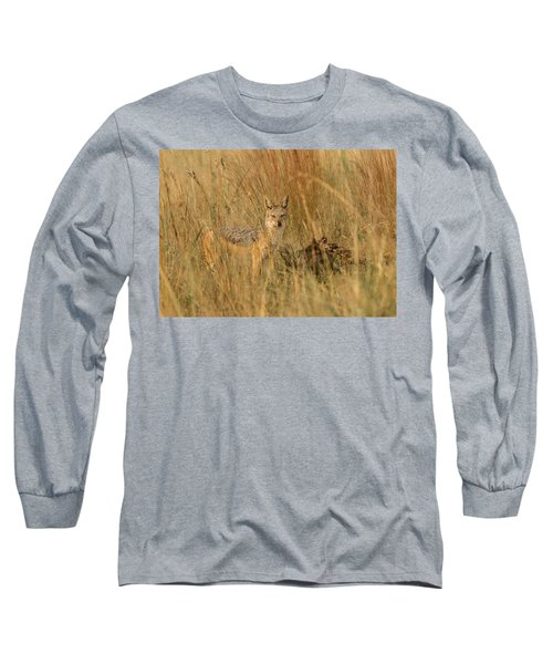 Silver Backed Jackal Long Sleeve T-Shirt by Patrick Kain