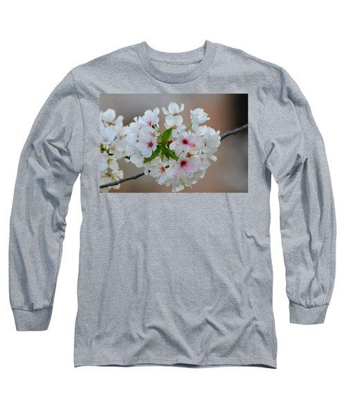 Springtime Bliss Long Sleeve T-Shirt