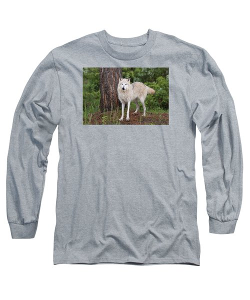 White Wolf. Long Sleeve T-Shirt