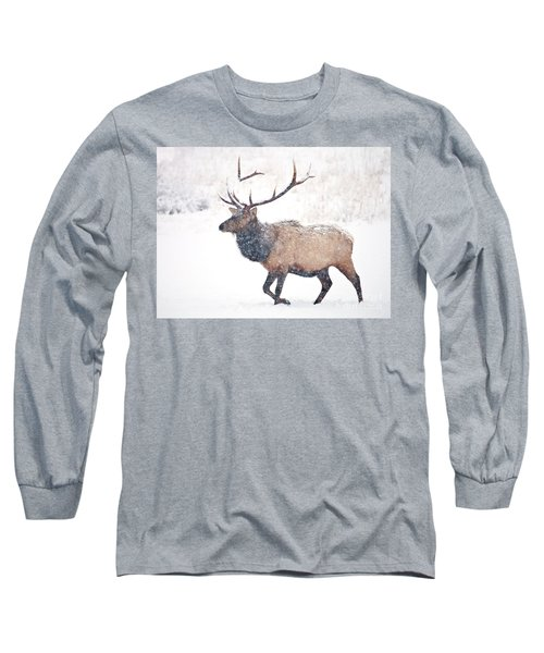 Long Sleeve T-Shirt featuring the photograph Winter Bull by Mike Dawson
