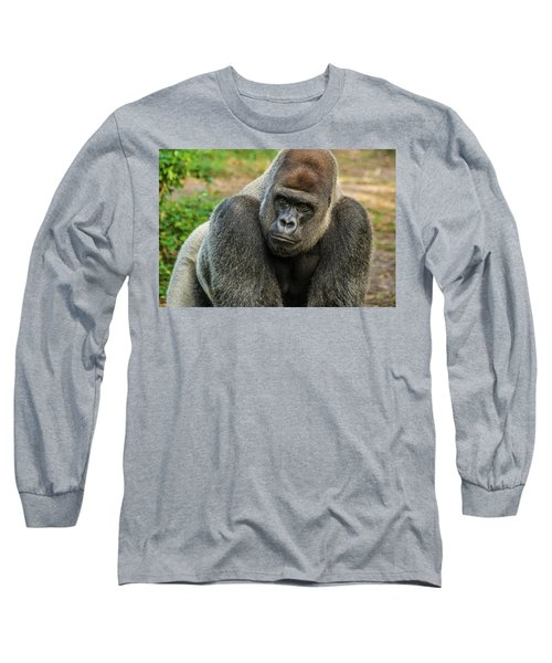 10898 Gorilla Long Sleeve T-Shirt by Pamela Williams