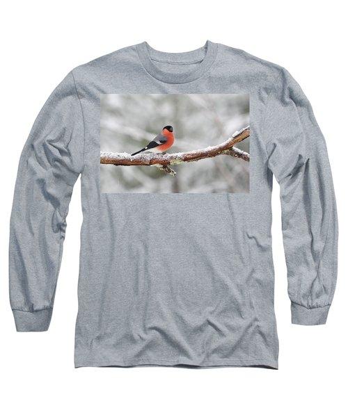 Eurasian Bullfinch Long Sleeve T-Shirt