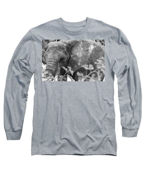 Long Sleeve T-Shirt featuring the photograph African Elephant  by Kevin Blackburn