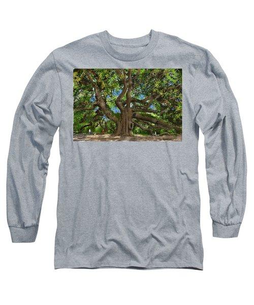 Angel Oak Long Sleeve T-Shirt by Jim Hubbard