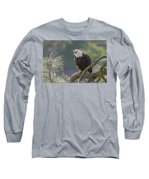 Bald Eagle Long Sleeve T-Shirt by Doug Herr