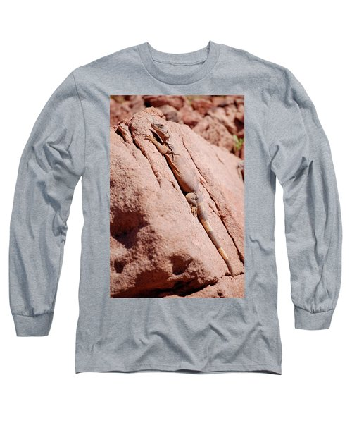 Chuckwalla, Sauromalus Ater Long Sleeve T-Shirt