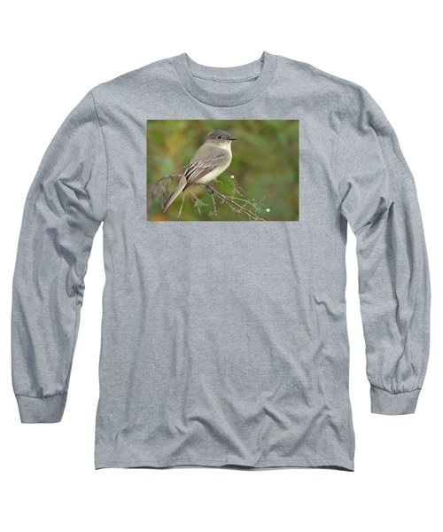 Eastern Phoebe Long Sleeve T-Shirt by Alan Lenk
