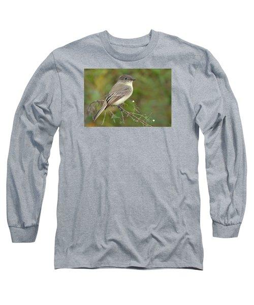 Eastern Phoebe Long Sleeve T-Shirt