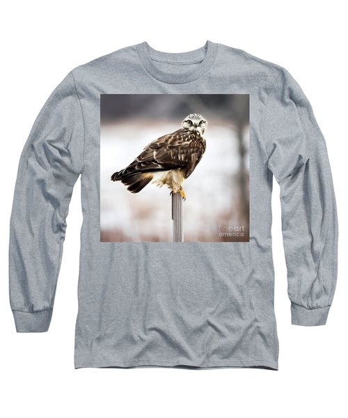 Long Sleeve T-Shirt featuring the photograph Rough-legged Hawk by Ricky L Jones