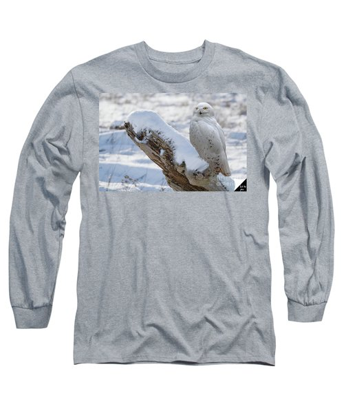 Long Sleeve T-Shirt featuring the photograph Snowy Owl by Jim  Hatch