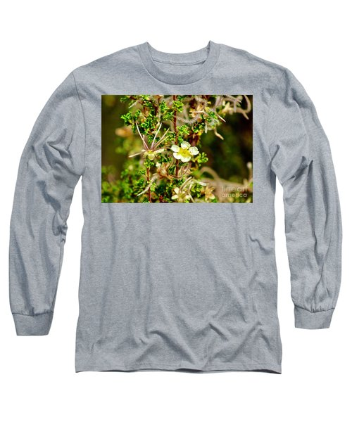 Wild Flowers  Long Sleeve T-Shirt