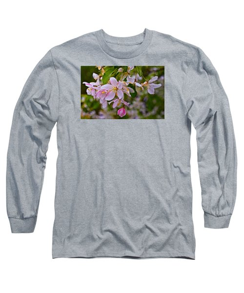2015 Spring At The Gardens White Crabapple Blossoms 1 Long Sleeve T-Shirt