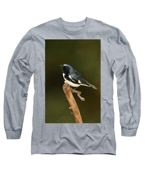 Black-throated Blue Warbler Long Sleeve T-Shirt by Alan Lenk