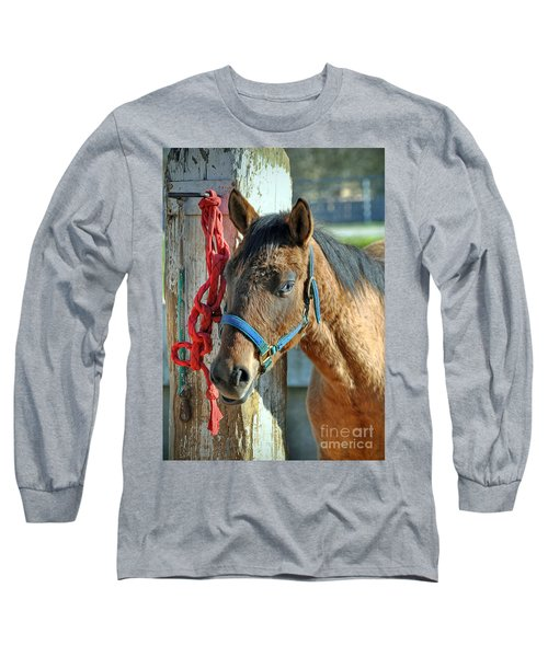 Horse Long Sleeve T-Shirt by Savannah Gibbs