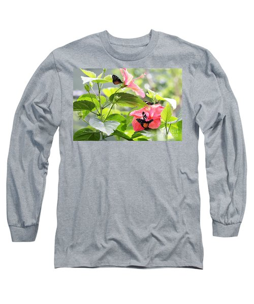 Cream-spotted Clearwing Butterfly Long Sleeve T-Shirt