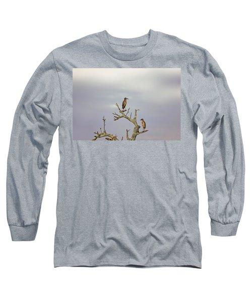 Green Heron Long Sleeve T-Shirt by Peter Lakomy