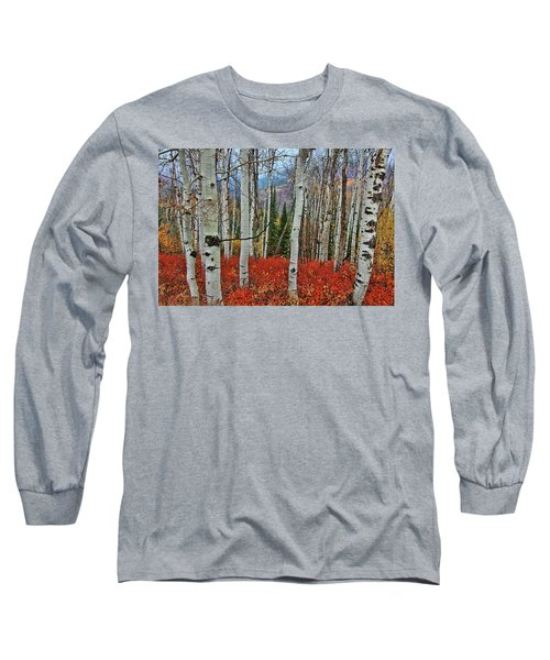 Rocky Mountain Fall Long Sleeve T-Shirt