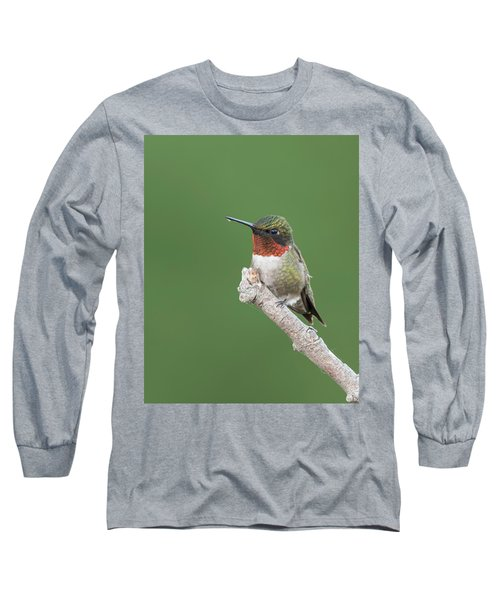 Ruby-throated Hummingbird Long Sleeve T-Shirt