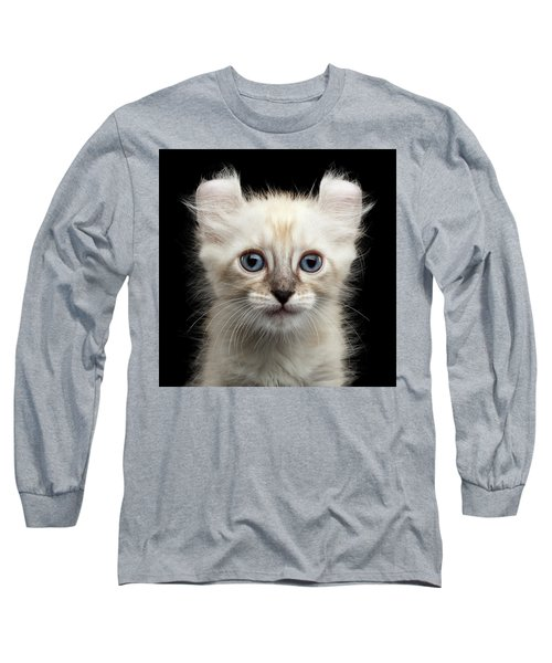 Cute American Curl Kitten With Twisted Ears Isolated Black Background Long Sleeve T-Shirt by Sergey Taran