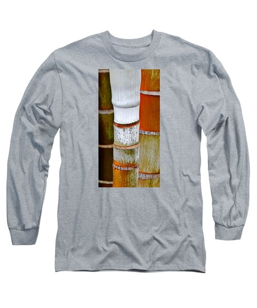 Long Sleeve T-Shirt featuring the photograph Bamboo Palm by Werner Lehmann