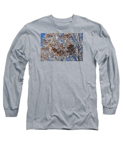 Hoar Frost Long Sleeve T-Shirt by Dacia Doroff
