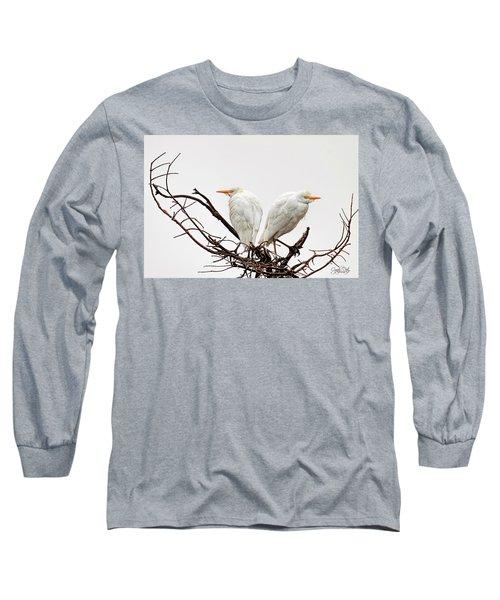 A Basket Of Anger Long Sleeve T-Shirt