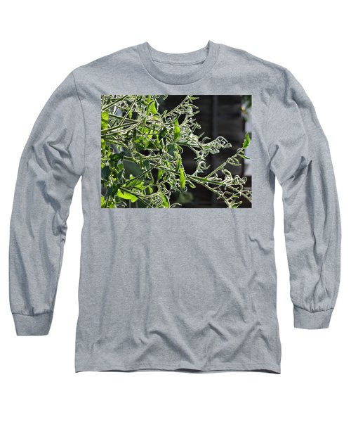 a day with the Veterans at Mary Lu's Long Sleeve T-Shirt