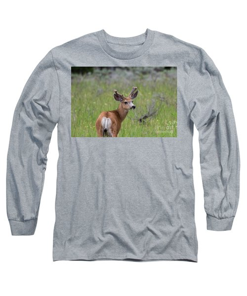A Deer In Yellowstone National Park  Long Sleeve T-Shirt