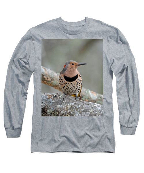 A Flicker Of Sunshine In Winter Long Sleeve T-Shirt by Amy Porter