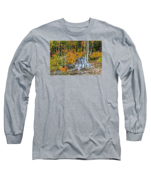 A Forest Of Color Long Sleeve T-Shirt by Stephen  Johnson