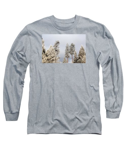 A Frosty Morning 2 Long Sleeve T-Shirt by Janie Johnson
