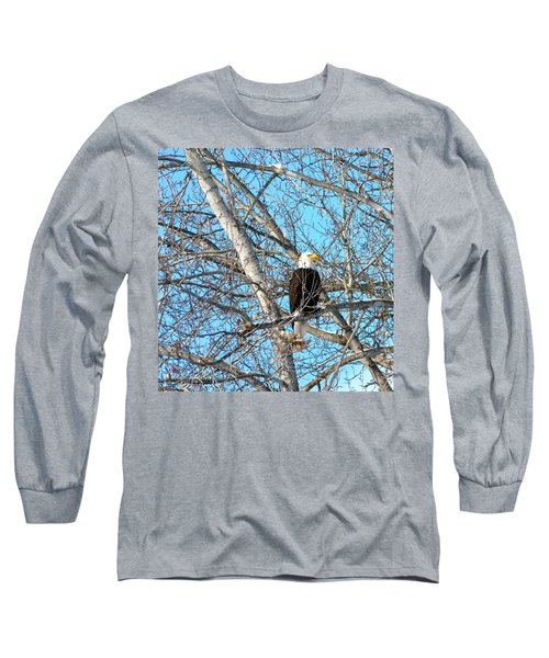 A Majestic Bald Eagle Long Sleeve T-Shirt by Will Borden