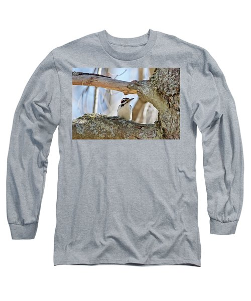 Long Sleeve T-Shirt featuring the photograph A Male Downey Woodpecker  1111 by Michael Peychich