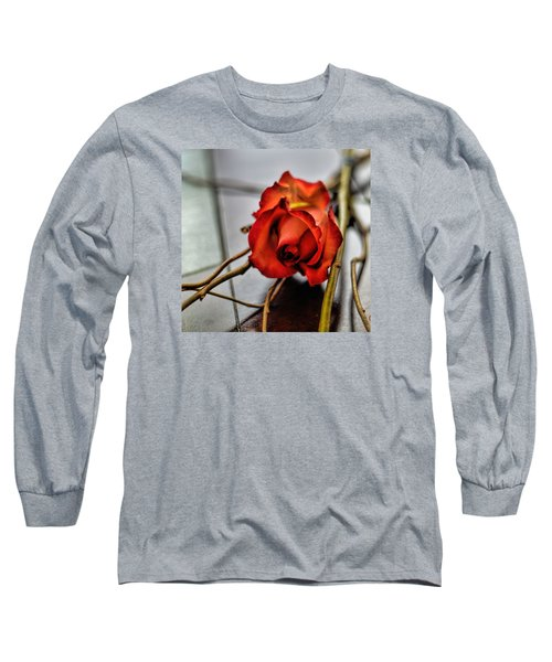 Long Sleeve T-Shirt featuring the photograph A Rose On Bamboo by Diana Mary Sharpton