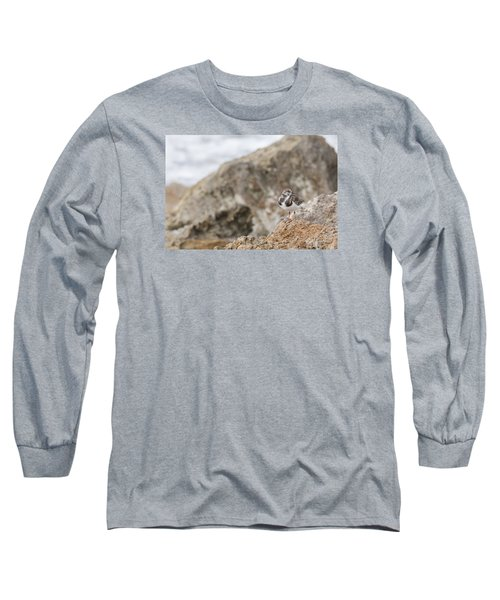 A Ruddy Turnstone Perched On The Rocks Long Sleeve T-Shirt