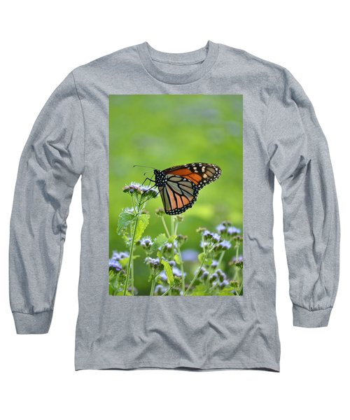 A Sip Of Mist Long Sleeve T-Shirt by JD Grimes