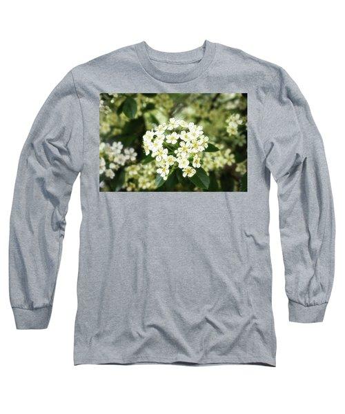 A Thousand Blossoms 3x2 Long Sleeve T-Shirt
