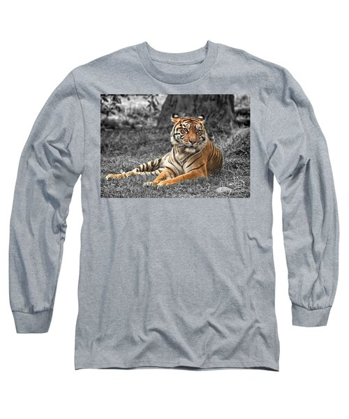 A Tiger Relaxing On A Cool Afternoon II Long Sleeve T-Shirt