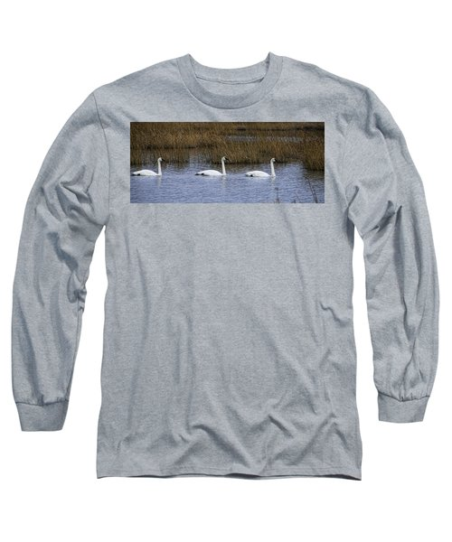 A Trio Of Swans Long Sleeve T-Shirt