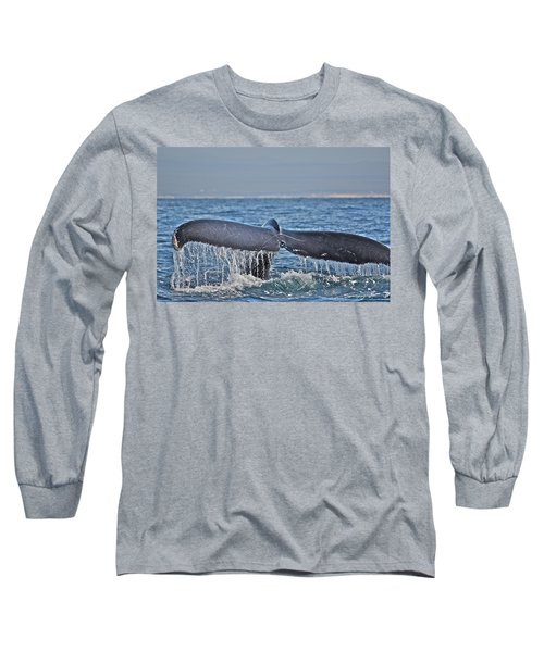 A Whale Of A Tale Long Sleeve T-Shirt