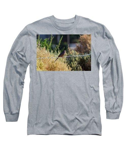 Abert's Towhee Long Sleeve T-Shirt
