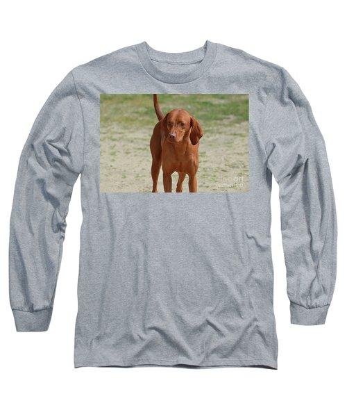 Adorable Redbone Coonhound Standing Alone Long Sleeve T-Shirt by DejaVu Designs